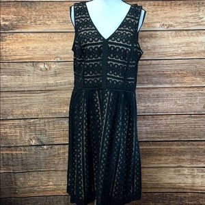 Loft• Black & Tank Sleeveless Dress